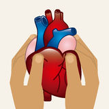 cardiologie illustration libre de droits