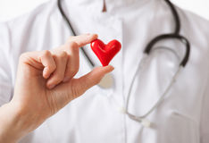 Cardiologist holding a ceramic red heart Stock Photography