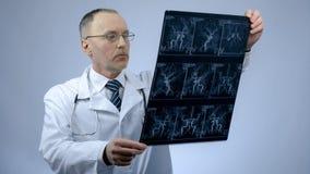 Cardiologo che controlla ricerca dei vasi sanguigni, malattia cardiaca, aritmia di CT fotografie stock