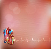 Cardiology background Stock Photos