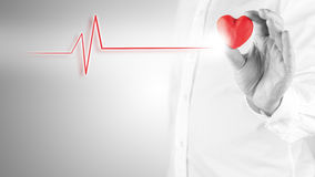 Cardiology cocnept. Healthy heart and cardiology concept with a cardiogram linked to red heart Royalty Free Stock Photography