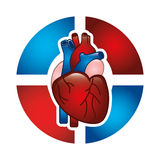 Cardiology design Stock Images