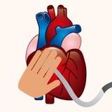 Cardiology Royalty Free Stock Photos