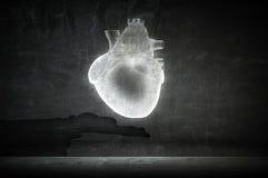 Cardiology and heart health vector illustration