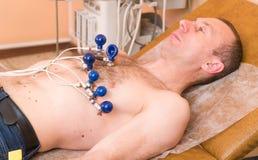 cardiology Kardiologen undersöker den tålmodiga kardiogrammet för ` s Doktorn undersöker hjärtan royaltyfri foto