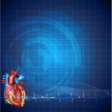 Cardiology technology background Royalty Free Stock Image