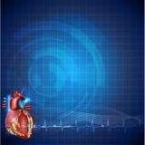 Cardiology technology background Royalty Free Stock Image