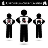 Cardiopulmonary System .  Human hold monitor screen and show imaging of Skeleton ( chest injury ) , Heart ( Myocardial Infarction. ) , Lung ( Pulmonary Royalty Free Stock Photography