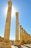 The Cardo Colonnaded Street, Jerash (Jordan) Stock Photography