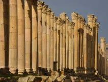 Cardo, Jerash Imágenes de archivo libres de regalías