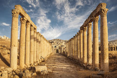 cardo maximus,古老罗马市的专栏上古,现代杰拉什Gerasa  免版税库存照片