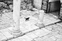Cardo Maximus Roman Pillars. Royalty Free Stock Photo