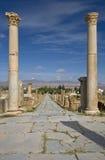 Cardo Street In Timgad Stock Photo