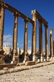 Cardo street in Jerash, Stock Image
