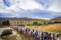 The Wall of Bras in Cardrona Valley, New Zealand Royalty Free Stock Photo