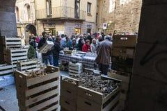 Mushroom flea market of Cardona in Catalonia, Spain Royalty Free Stock Image