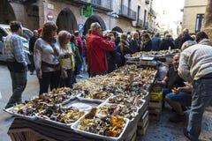 Mushroom flea market of Cardona in Catalonia, Spain Royalty Free Stock Photography