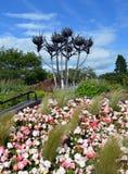 Cardos e jardim: arte pública na polegada norte, Perth, Imagens de Stock Royalty Free
