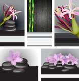 Cards and banners with bamboo and orchids Royalty Free Stock Images