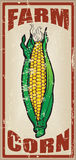 Cards for corn farm Stock Photos