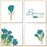 Cards with crocus spring flowers Stock Photography