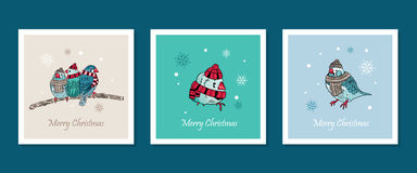 cards with cute birds warm dressed in winter season Stock Photography