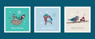 cards with cute birds warm dressed in winter season Royalty Free Stock Photography