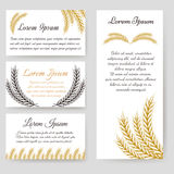 Cards and flyer template harvest design Stock Photography