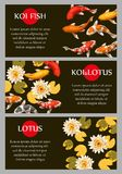 Cards with koi fish and lotus. Vector cards with koi fish and lotus, with copy space Stock Images