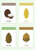 Cards with nuts. Vector illustration royalty free illustration