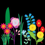 Cards with painted flowers. Beautiful colorful illustrations. Stock Photography