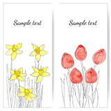 Cards with spring flowers. EPS,JPG. Cards with spring flowers (tulips and daffodils). EPS,JPG Stock Photography