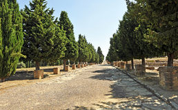 Cardus maximus, archaeological site of the Roman city of Italica, Andalusia, Spain Stock Photos