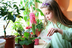 Care. An image of a girl taking care of her flowers Stock Image