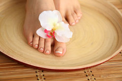 Care for beautiful woman legs with flower Royalty Free Stock Photos