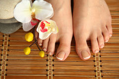 Care for beautiful woman legs with flower Stock Image