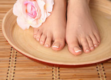 Care for beautiful woman legs with flower Royalty Free Stock Photo