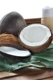 Care coconut Royalty Free Stock Photography