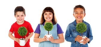 Care the environment. Children holding a small tree. Care the environment stock photo