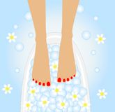 Care of feet, birdbaths with the flowers of camomi. Le, vector illustration Stock Photo