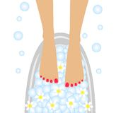Care of feet, birdbaths with the flowers of camomile. Vector illustration Royalty Free Stock Image