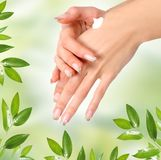 Care on green Stock Images
