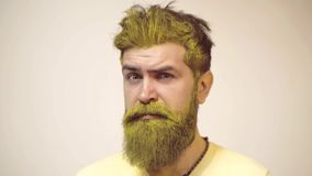 Care and hair products. Attractive caucasian bearded hipster. Hairdresser, beauty salon. Bearded man with color beard stock video footage