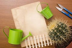 Care home with cactus plants Stock Image