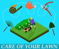 Care for Lawn Infographic. Vector Illustration. royalty free illustration