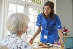 Care nurse serving dinner to a senior woman at home stock photo