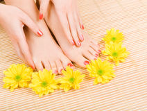 Care for woman legs Royalty Free Stock Photo