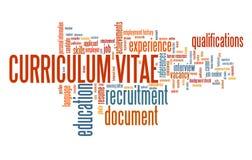Career CV vector illustration