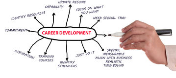 Career Development Stock Images