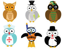 Career owl Royalty Free Stock Photography